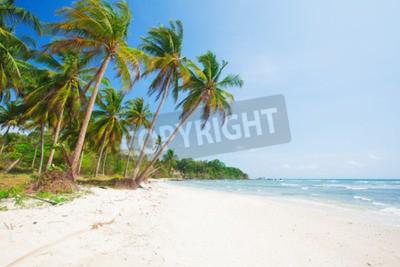 Fototapet tropisk strand med kokospalm och hav