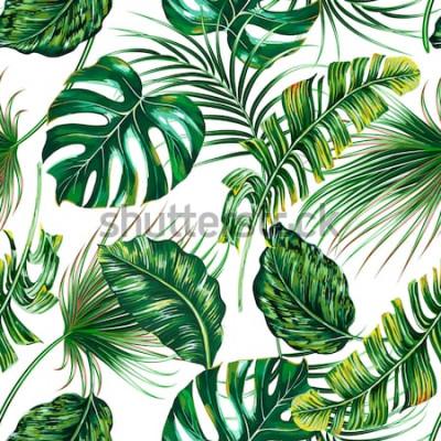 Fototapet Tropiska palmblad, monstera, sömlös blommig sommarbakgrund för djungelbladvektor