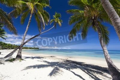 Fototapet Tropiskt paradis på Fiji ön