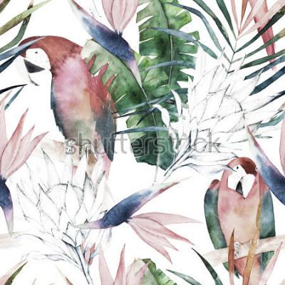 Fototapet Tropiskt sömlöst mönster med papegojor, protea och löv. Akvarell sommarutskrift. Exotisk handritadillustration