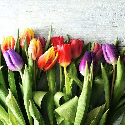 Fototapet tulipany