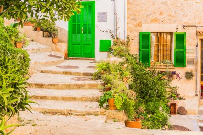 Fototapet Typiska växt dekoration på en gammal lantlig Mediterranean Village