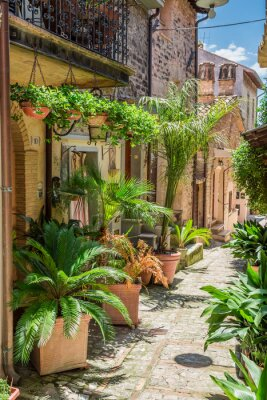Fototapet Underbart inredda gata i liten stad i Italien, Umbrien