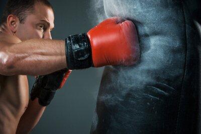 Fototapet Unga boxare boxning