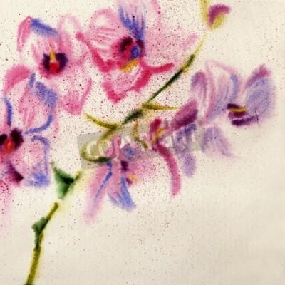 Fototapet Vacker akvarell orkidé
