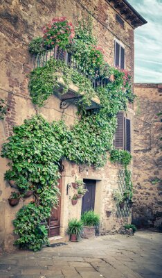 Fototapet Vacker gata i Montisi, Toscana