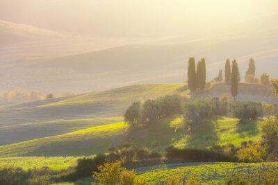 Fototapet Vacker soluppgång landskap med pittoreska kullar