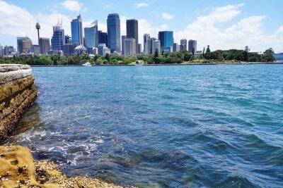 Fototapet Vacker utsikt över centrala Sydney skyline från hamnen