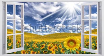 Fototapet Vackert sommarlandskap, fönsterutsikt