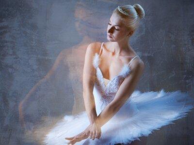 Fototapet Vackra balettdansös