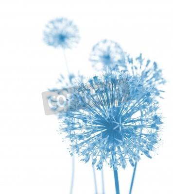 Fototapet Vackra Blå blommor / abstrakt komposition på vit bakgrund