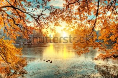 Fototapet Vackra färgade träd med sjön i höst, landskapsfotografering. Sen höst och tidig vinterperiod. Utomhus och natur.