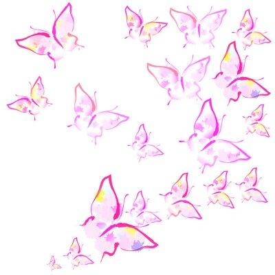 Fototapet vackra rosa fjärilar, isolerad på en vit