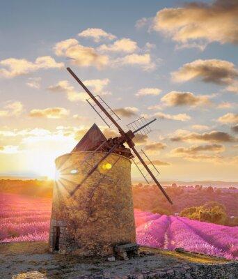 Fototapet Väderkvarn med Levander fält mot färgrik solnedgång i Provence, Frankrike