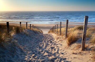 Fototapet väg till Nordsjön stranden i guld solsken
