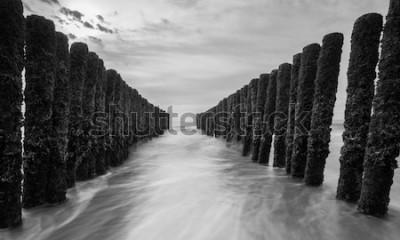 Fototapet vågbrytare vid Östersjön i svartvita färger