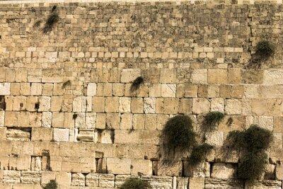 Fototapet Västra muren i Jerusalem