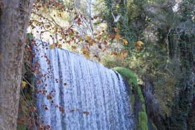 Fototapet vattenfall i höst full av löv