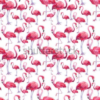 Fototapet vattenfärg exotisk flamingo