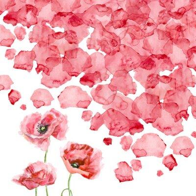Fototapet Vattenfärg kronbladen på en vallmo