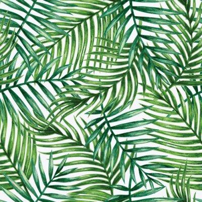 Fototapet Vattenfärg tropisk palmblad seamless. Vektor illustration.