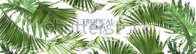 Fototapet Vector horisontella tropiska blad banderoller på vit bakgrund. Exotisk botanisk design för kosmetika, spa, parfym, hälsovårdsprodukter, arom, bröllopsinbjudan. Bust som webb banner