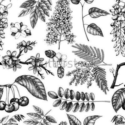 Fototapet Vektor bakgrund med handritad blommande träd illustration. Vårblommor skiss samling. Blommigt sömlöst mönster
