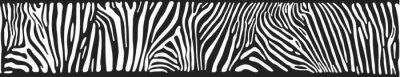 Fototapet Vektor bakgrund med zebra hud