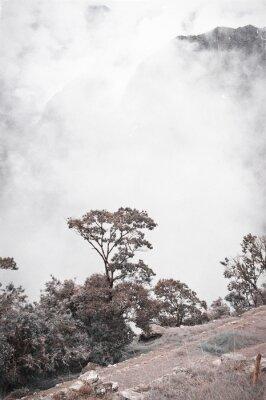 Fototapet View Från Machu Picchu