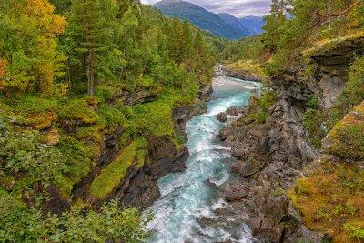 Fototapet Vilda berg flod mellan branta klippor