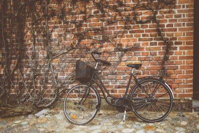 Fototapet Vintage cykel lutad mot väggen
