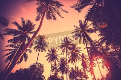 Fototapet Vintage tonad semester bakgrund gjord av palmträd silhuetter vid solnedgången.
