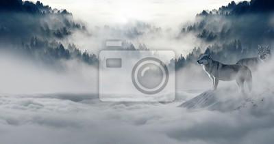 Fototapet vinter snö