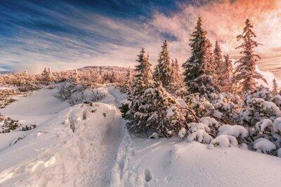 Fototapet Vinter solnedgång på Beskydy Mountains