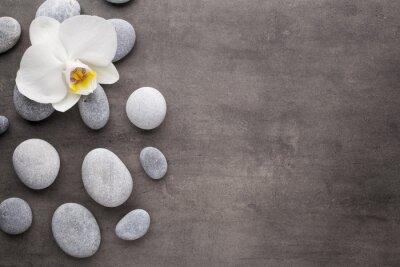 Fototapet Vit orkidé och spa stenar på grå bakgrund.