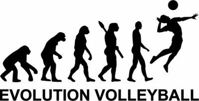 Fototapet volleyboll Evolution