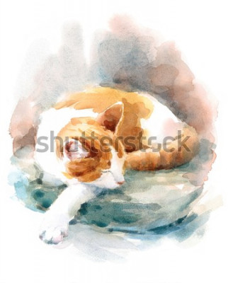 Fototapet Watercolor Cat Sleeping on the Pillow Hand Painted Pet Portrait Animal Illustration