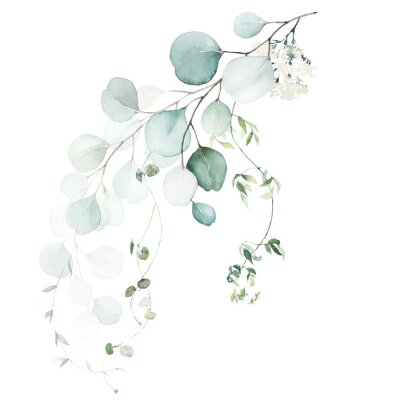Fototapet Watercolor floral illustration bouquet - green leaf branch collection, for wedding stationary, greetings, wallpapers, fashion, background. Eucalyptus, olive, green leaves, etc.