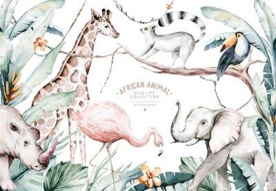Fototapet Watercolor illustration of African Animals: lemur, flamingo and giraffe, toucan and rhipo, rhino and elephant isolated white background. Safari savannah animals