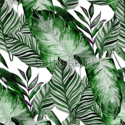 Fototapet Watercolor seamless pattern with tropical leaves: palms, monstera, passion fruit. Beautiful allover print with hand drawn exotic plants. Swimwear botanical design.