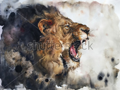 Fototapet Watercolour painting of lion