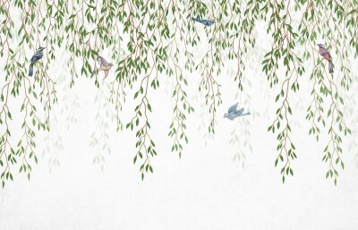 Fototapet Willow branches hanging from above with birds on a white background. Wallpaper, murals and wall paintings for interior printing.