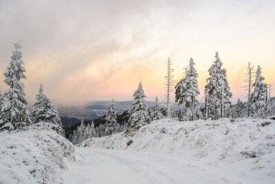 Fototapet Zimowa droga w górach