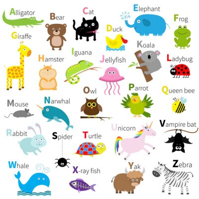 Fototapet Zoo djur alfabetet. Gullig tecknad teckenuppsättning. Isolerat. Vit design. Baby barn utbildning. Alligator, björn, katt, anka, elefant, groda, giraff, hamster, leguan, maneter, koala Kompakt design.