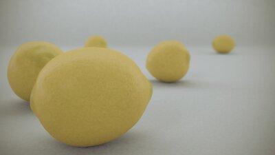 Väggdekor 3 D framför gula citroner på en vit bakgrund föll från luften och rullade på den vita oändlig yta.