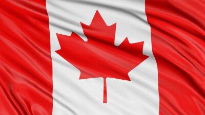 Väggdekor 3D Kanada sjunker