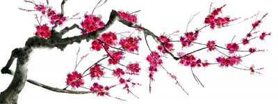 Väggdekor A branch of a blossoming sakura. Pink and red stylized flowers of plum mei and  wild cherry . Watercolor and ink illustration of tree in style sumi-e, go-hua,  u-sin. Oriental traditional painting. .