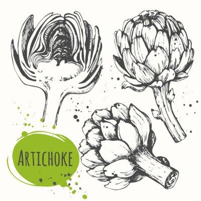 Väggdekor Aartichoke. Uppsättning av handritad kronärtskocka. Färska ekologiska livsmedel.