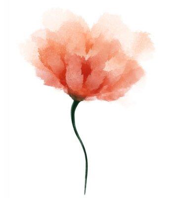 Väggdekor Abstract watercolor flower. Hand drawn orange flower