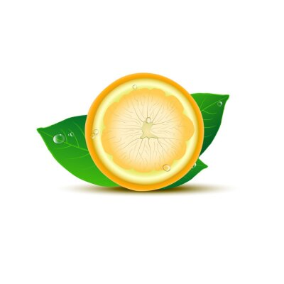 Väggdekor Abstrakt citron med blad och droppar på vit bakgrund